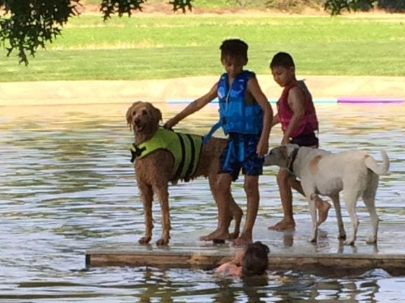 Griffin-hanging-on-the-raft-july-2018-blog.jpg